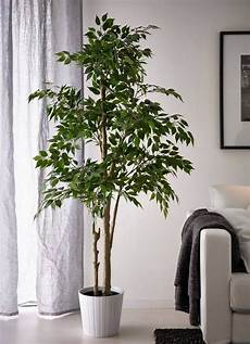 houseplant trends for 2017 living room ideas fake plants fake plants decor artificial