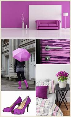 magenta color collage colorfully behr