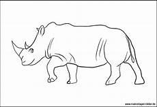 Bilder Zum Ausmalen Nashorn Ausmalbild Nashorn Malvorlagen F 252 R Kinder