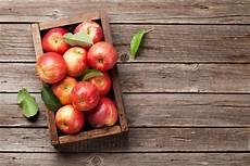 196 pfel richtig ernten lagern hilfreiche tipps 사과 과일