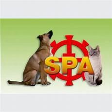 spa mulhouse chien spa de mulhouse refuge pour animaux chiens et chats 224