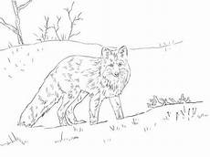 fox in snow coloring page free printable coloring