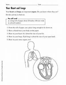 your heart and lungs worksheet for 2nd 3rd grade lesson planet