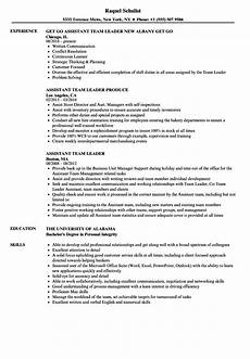 assistant team leader resume sles velvet