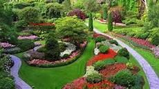 Desain Taman Bunga Kumpulan Desain Rumah