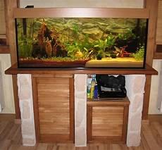 neuer start mit 300 liter aquarium forum