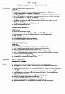 operations team lead resume sles velvet