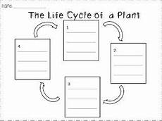 worksheets on plants cycle 13606 teaching worksheet the cycle of a plant 4 2 3 ls1a aligns with the ccss plant