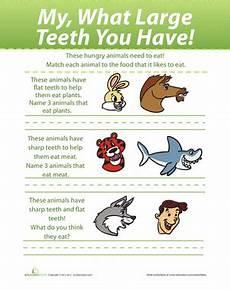 animal teeth worksheets 14367 preschool science worksheets free printables page 6 education