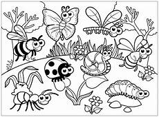 insects to print insects coloring pages