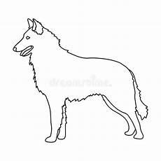 le loup belge ic 244 ne simple de la belgique dans l