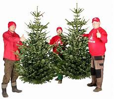 wann weihnachtsbaum kaufen weihnachten 2019