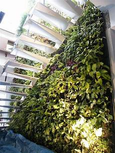 To Make Vertical Garden Indoor Living Wall by Living Walls Green Walls And Vertical Gardens Living
