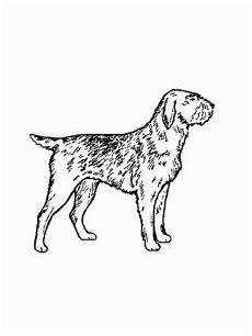 Malvorlage Liegender Hund Hund 3 Ausmalbild Malvorlage Hund