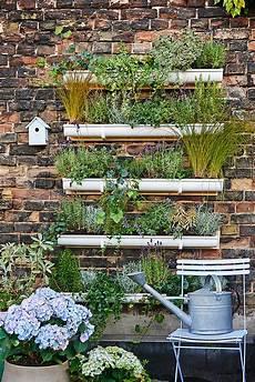 giardino verticale fai da te giardino verticale fai da te in 6 mosse guida passo passo