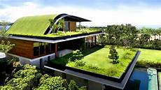 Living Roof 12 homes with living roofs