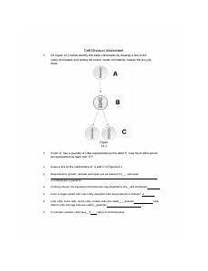 cell division worksheet with answers 6961 cell division worksheet rtf cell division worksheet 1 on figure 12 1 below identify the