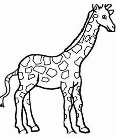 Malvorlagen Giraffe Sch 246 Ne Ausmalbilder Malvorlagen Giraffe Ausdrucken 3