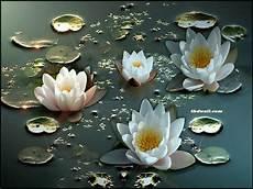 Flower Wallpaper Laptop by Beautiful Hd Wallpapers For Laptop Beautiful Bouquet Of