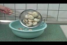 frische chignons einfrieren pilze blanchieren so machen sie es richtig