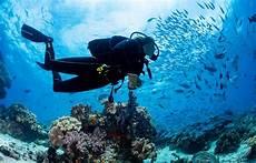 diving and yoga retreat raja at biodiversity eco resort