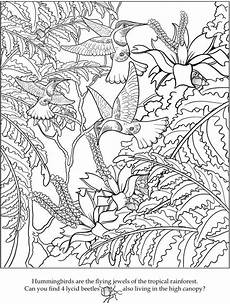 Malvorlagen Urwald Name Bird Coloring Pages Image By Xquizit Jem On Coloring