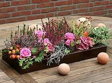 2104 Best Favoritos Images On Floral