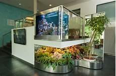 aquarium als raumtrenner privatklinik