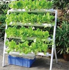 Gardening Systems by Soilless Gardening Systems Garden Ftempo