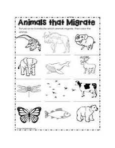 migrating animals coloring pages 17086 migration worksheets