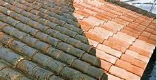 mousse sur le toit meilleur anti mousse de toiture guide d achat complet