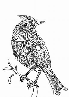coloring pages of animals 17199 animal coloring pages pdf bird coloring pages mandala coloring pages farm animal coloring pages