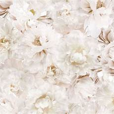 small flower wallpaper for wall graham brown white flowers floral wallpaper