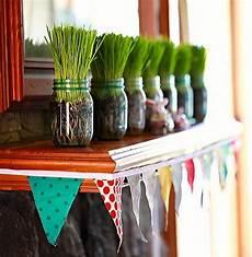 17 nature wheatgrass decor ideas homemydesign