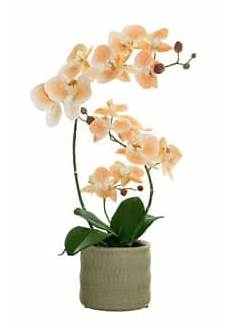 Kunst Orchidee Im Topf - kunstorchideen k 252 nstliche orchideen im topf