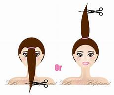 ponytail haircut do it yourself diy hairstyles do it yourself hair styling guide lydia s