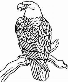 Ausmalbilder Zum Ausdrucken Adler Wellcome To Image Archive Ausmalbilder Adler