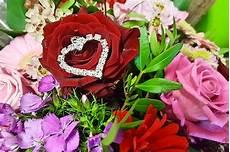 Signification Des Roses Et Des Couleurs Dans Le Langage