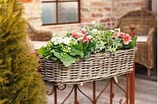 rattan balkon balkon pflanzkorb rattan wohnambiente shop