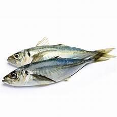 Ikan Kembung 0 5kg Grocer Helper Barang Dapur Basah