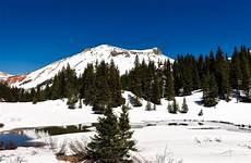 Gambar Pemandangan Hutan Gunung Salju Musim Dingin