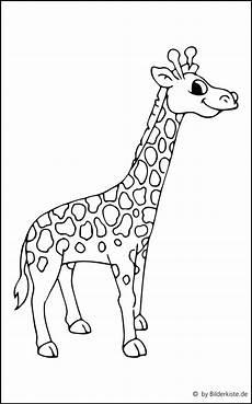 giraffe ausmalbild ausmalbild club