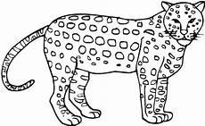 ausmalbilder gratis gepard in 2020 ausmalbilder
