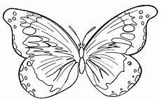 Malvorlagen Kostenlos Zum Ausdrucken Schmetterlinge Ausmalbilder Malvorlagen Schmetterlinge Kostenlos Zum
