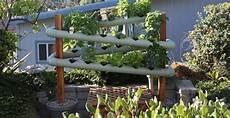 giardino verticale fai da te garden design fai da te checkmateinthegardendotcom