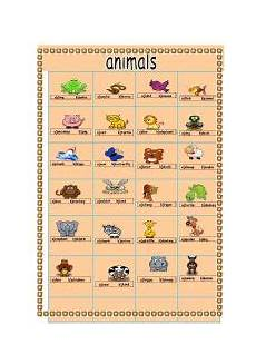 animal rights worksheets 14022 animal worksheet new 782 animal cruelty worksheets