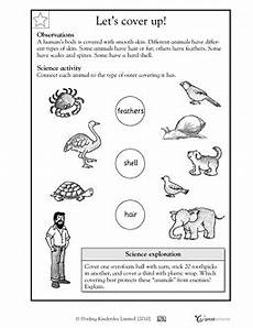 the animals worksheet for grade 1 14270 skin feathers and shells шаблоны для печати шаблоны