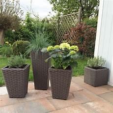 Pflanzkübel Modern Bepflanzen - rattan k 252 bel mit bepflanzung bepflanzung pflanzen und