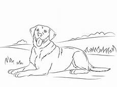 ausmalbilder hunde mischlinge ausmalbilder ausmalbilder hunde zum ausdrucken