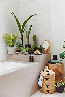 deko ideen fürs bad eine entspannende badezimmergestaltung mit pflanzen f 252 rs